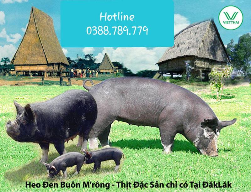 Heo đen buôn M Rông, Thịt đặc sản chỉ có tại ĐắK LắK